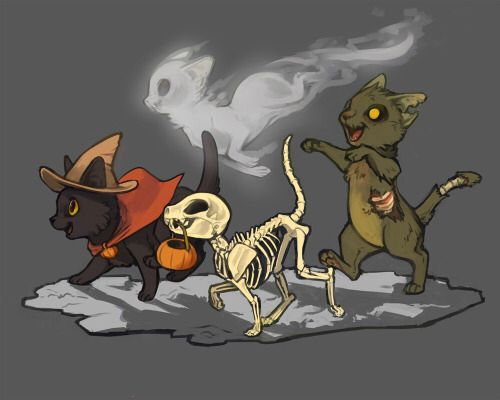 All types of Halloween cats