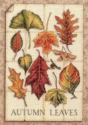 Leaves of Autumn cross stitch pattern - Cross stitch patterns design collection