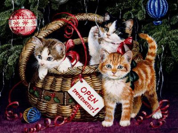 203 Best Cats Christmas Winter Art Images On