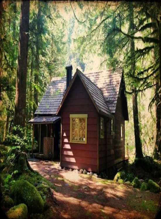 17 Best Images About Little Cabin In The Woods On