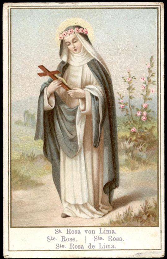 Saint Rose of Lima Santa Rosa de Lima