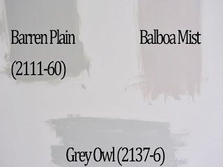 benjamin moore barren plain, balboa mist and grey owl test patches.