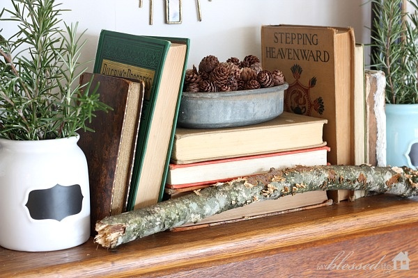 Winter Mantel: Holiday, Book Shelf, Mantel Decorating, Winter Coat, House Ideas, Decorating Ideas, Christmas Winter Solstice, Diy Decorate, Diy Christmas