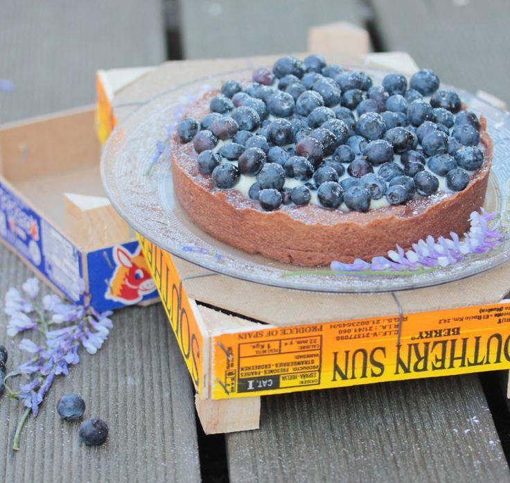Heidelbeer – Panna Cotta – Kuchen