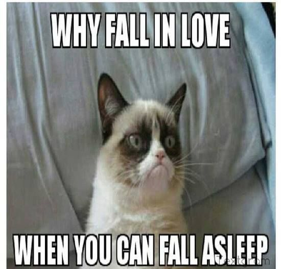 40  Grumpy Cat Memes That You Will Love! #grumpycat #memes - Tap the link now to see all of our cool cat collections!