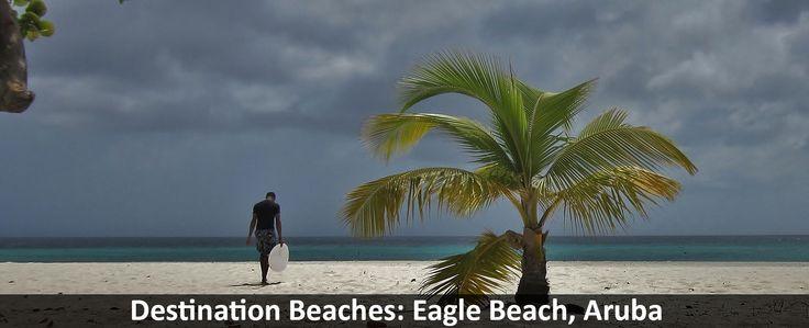 Destination Beaches: Eagle Beach, Aruba - https://traveloni.com/blog/destination-beaches-eagle-beach-aruba/ #destinatonbeach #caribbeanvacation #aruba