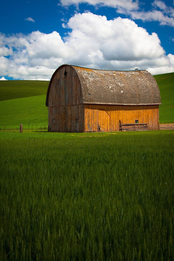 Country Living - Barn In Palouse, Wa
