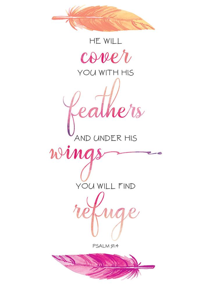 Under His Wings – Psalm 91:4 | Seeds of Faith
