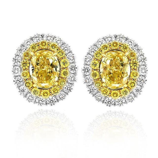 Be enchanted by the sublime beauty of the Fantasy Diamonds Collection.  Sparkling yellow and white diamonds are superbly crafted in luxurious platinum and 18ct yellow gold.  Who else loves these beautiful stud earrings?  #gerardmccabe #diamonds #earrings #gift #adelaide #yellowdiamonds