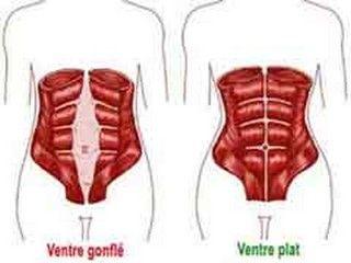 gainage statique pour la ceinture abdominale  lire la suite / http://www.sport-nutrition2015.blogspot.com