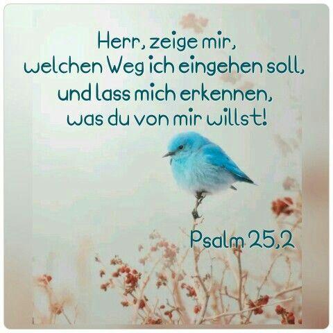 Herr, zeige mir , welchen Weg ich eingehen soll und lass mich erkennen, was du von mir willst!  Psalm 25,2