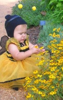 Exposure to two neonicotinoid insecticides – acetamiprid and imidacloprid – most commonly associated with bee deaths, can also harm children