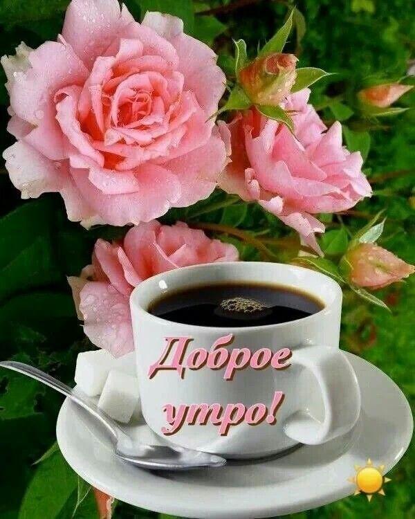 Открытки с добрым утром красивые с цветами новинки