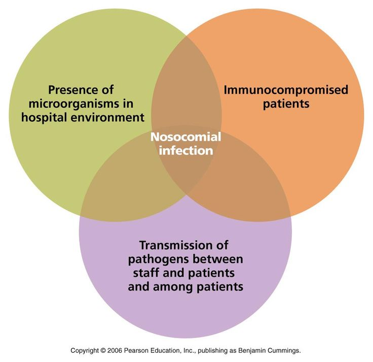 The Nurse's Role In Preventing Nosocomial Infections