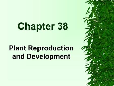Chapter 38 Plant Reproduction and Development. Reproduction and Development Alternation of Generations Angiosperms and other plants exhibit alternation.