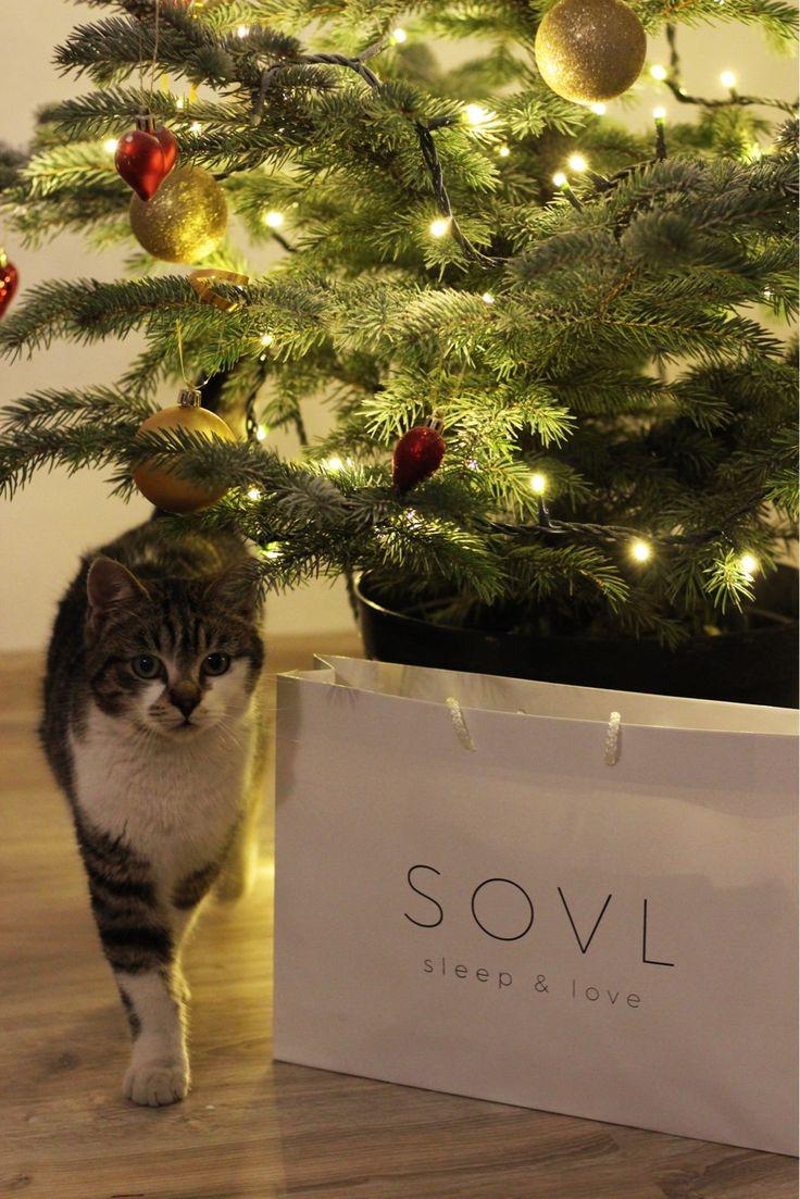 Christmas kitty by SOVL