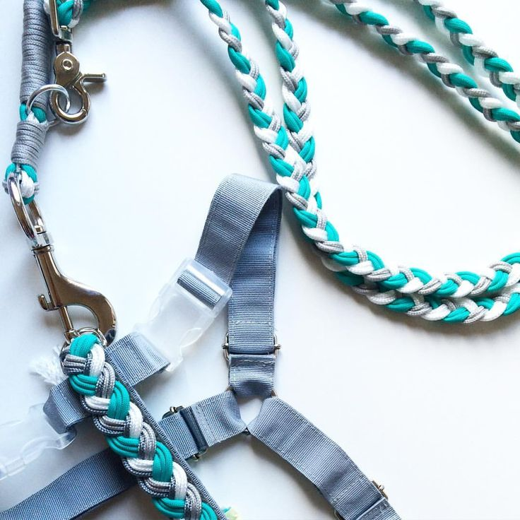 Pettorina e guinzaglio fatti a mano in stile Tiffany | handmade Tiffany style Long leash and harness for dogs • Aquisette • @aquisette_irenecenton