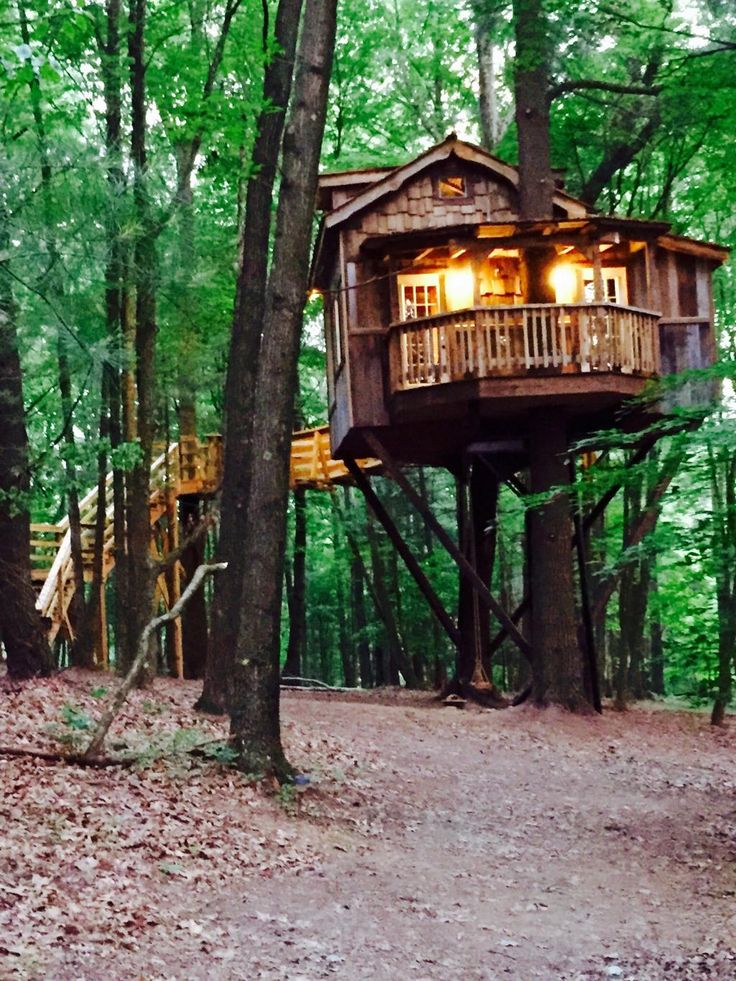 225 best Tree House images on Pinterest | Awesome tree houses, Campers and  Container homes