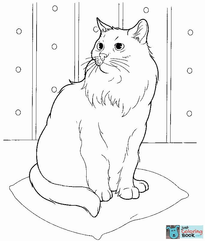 Cats Coloring Pages Free Coloring Pages Within Free Printable Cat Watching Himself In A Puddle Coloring Pages Cat Coloring Page Cat Colors Free Coloring Pages