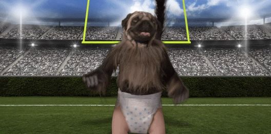 Reminds me of Cam Newton Played like a puppy against the big dogs,looks like a monkey and cried like a baby after !!