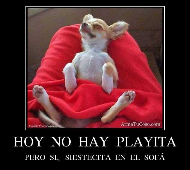 HOY  NO  HAY  PLAYITA PERO  SI,   SIESTECITA  EN  EL  SOFÁ