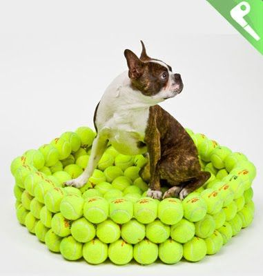 Like,innovative idea... tennis ball dog bed... made from recycled balls..