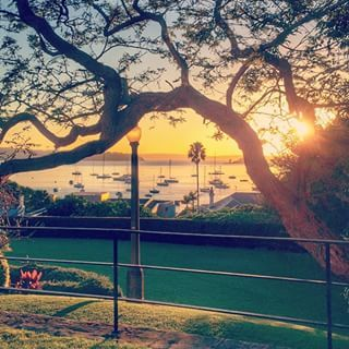 Arthur McElhone Reserve, Elizabeth Bay | 18 Magical Places You Won't Believe Are Actually In Sydney