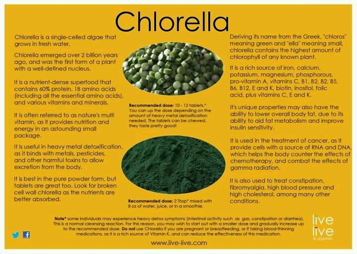 17 Best Images About Wheatgrass Amp Chlorella On Pinterest