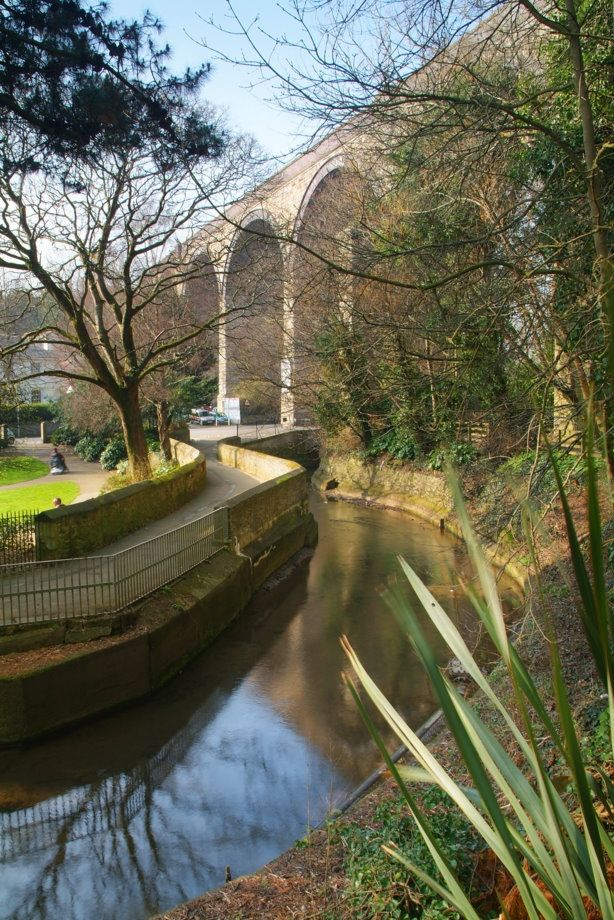 Viaduct and River Kenwyn at Victoria Gardens and Waterfall Gardens, Cornwall