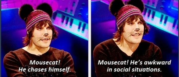 Mousecat! Noel Fieldmouse! Nevermind the Buzzcocks!