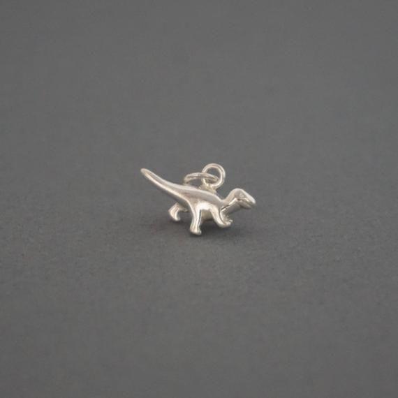 Tyrannosaurus Rex  Dinosaur Charm Sterling Silver Pendant 3d T Rex