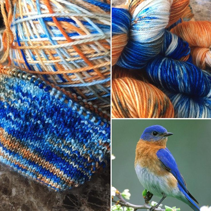 Eastern Bluebird available in 80/20 SW Merino/Nylon Sock Yarn and SW Merino Worsted.  Indie Dyed Yarn inspired by songbirds.  Click the pic to visit my site.  Thank you!