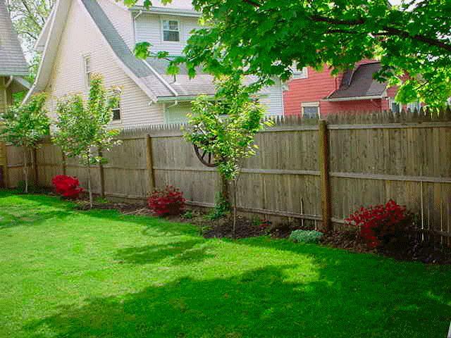 Border against fence backyard options pinterest for Back garden fence ideas