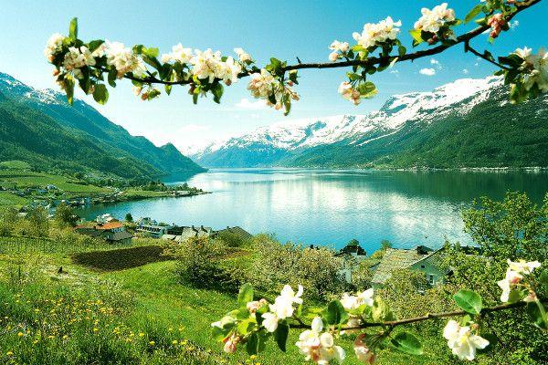 Hardangerfjord Circuit Norvège des fjords Oslo Norvege