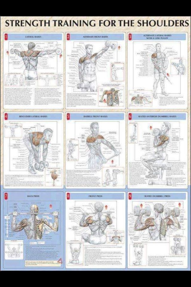 Shoulder Exercises- need these to strengthen weak muscles...