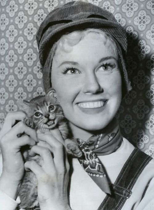 Doris Day with kitten - Doesn't get much cuter than this, people.