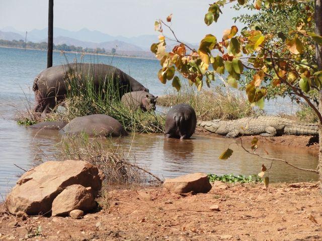 Lake Kariba in Zimbabwe, enjoyed on a trip with Cederberg 4x4. Next trip 12 to 28 July 2016