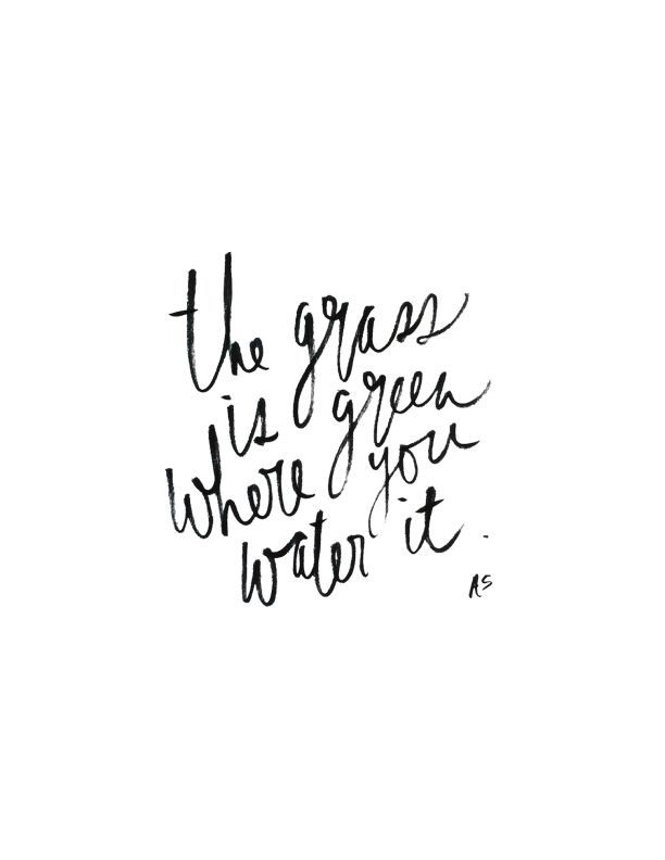 the grass is green where you water it | quotes. words. wisdom. | Pinterest | Quotes, Inspirational Quotes and Words