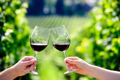 Vinoforum e sostenibilità vitivinicola