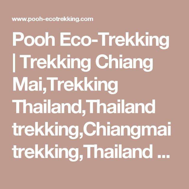 Pooh Eco-Trekking | Trekking Chiang Mai,Trekking Thailand,Thailand trekking,Chiangmai trekking,Thailand Trek,Chiangmai Trek,Thailand Treks,Chiangmai Treks