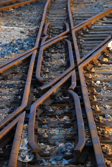 The narrow gauge and wide gauge cross each other at an abandoned railway station at Humerail, Port Elizabeth, South Africa.