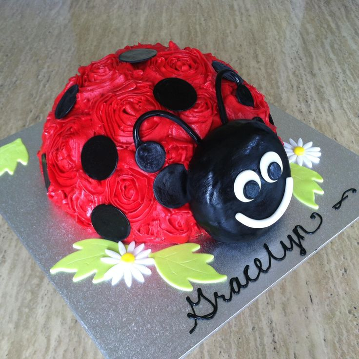 Cute LADY bug cake