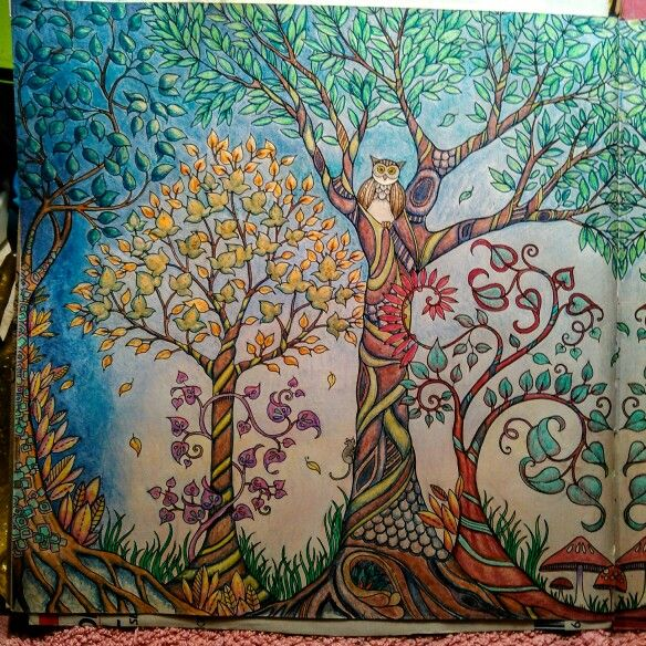 44 Best Enchanted Forest Pics I Colored Images On