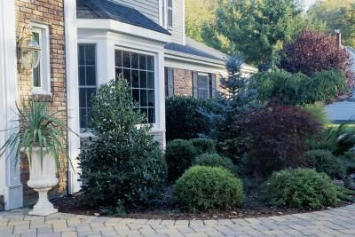 Landscaping done well can add beauty and curb appeal to your home, while a poor landscape design can accentuate all the wrong things about your home and make for expensive and time-consuming garden ...