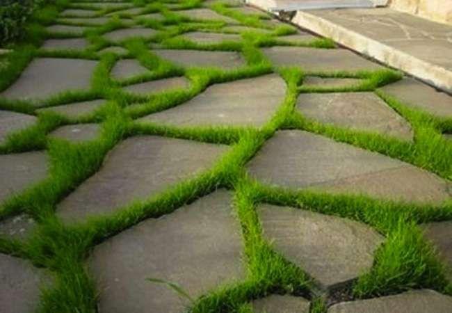 Garden Paths: 16 Easy-to-Imitate Stone Walkways