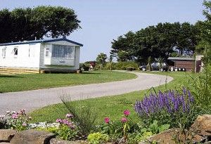 Caravan holidays in Cornwall | Newquay holiday park | Treworgans #ilovenqy
