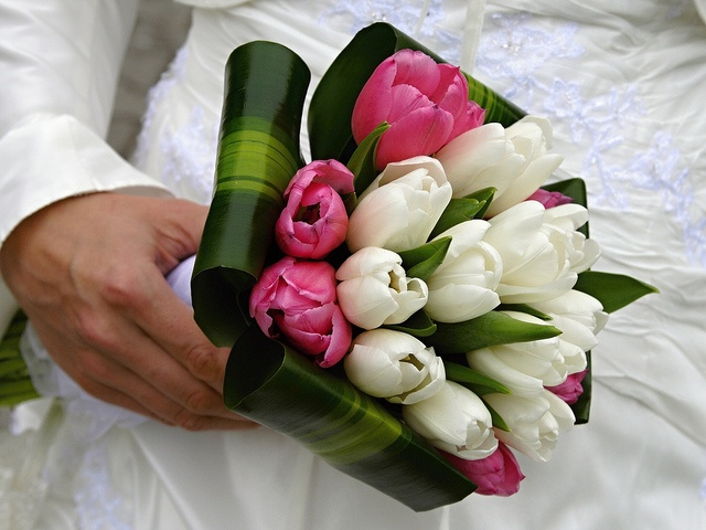 This is an affordable bride bouquet made of pink and white tulips, frames with tropical greens. Bunches Direct creates affordable wedding arrangments that are shipped directly to your door.    To view more wedding bouquet ideas visit us at www.bunchesd