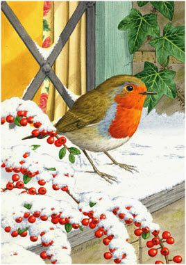 enl - Robin on windowsill