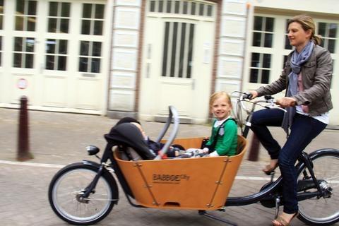 Babboe Cargo Bikes -Babboe Easy