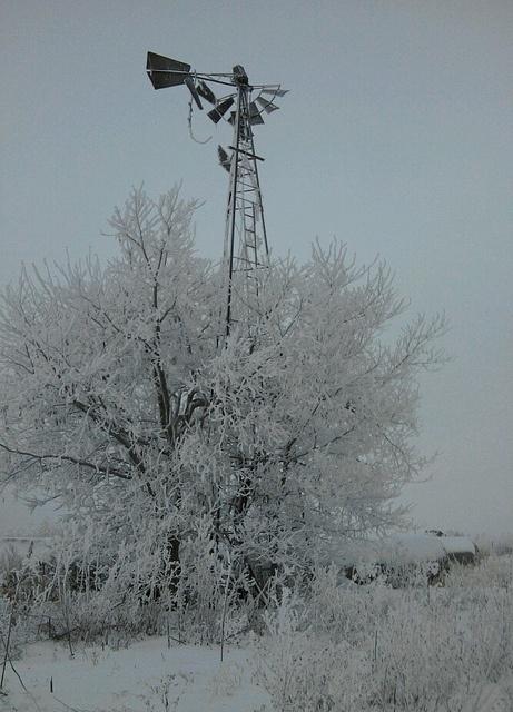Windmill in the freezing fog, Dec. 2010. Location Unknown: Barns Windmills, Old Windmills, Windmills Trees, Lighthouses Windmills, Country Windmills, Windmills Barns, Photo, Love Windmills, Favorite Windmills